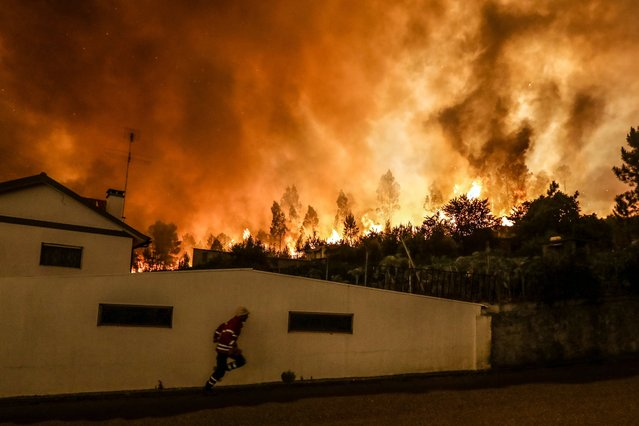 A Firefighter battles with a fire in Pampilhosa da Serra, central of Portugal, 18 June 2017. At least sixty two people have been killed in forest fires in central Portugal, with many being trapped in their cars as flames swept over a road on the evening of 17 June 2017. (Photo by Paulo Novais/EPA)