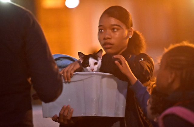 A resident and a cat are evacuated from the Taplow Tower residential block as a precautionary measure following concerns over the type of cladding used on the outside of the building on the Chalcots Estate in north London, Britain, June 23, 2017. (Photo by Hannah McKay/Reuters)