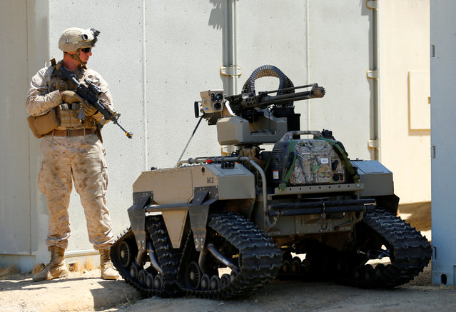 A U.S. Marine stands behind a Multi-Utility Tactical Transport ( MUTT) during a patrol as part of Rim of the Pacific (RIMPAC) 2016 an exercise held at Camp Pendleton, California United States, July 13, 2016. (Photo by Mike Blake/Reuters)