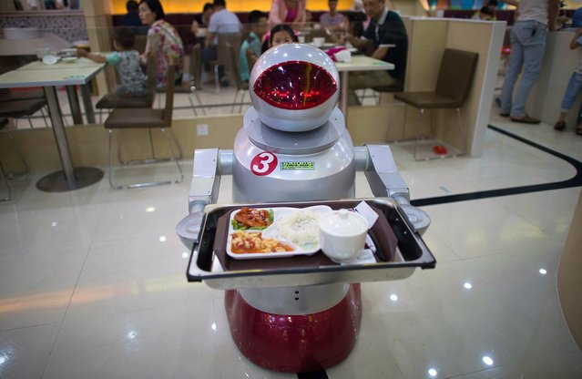 This photo taken on August 13, 2014, shows a robot carrying food to customers in a restaurant in Kunshan. It's more teatime than Terminator – a restaurant in China is electrifying customers by using more than a dozen robots to cook and deliver food. (Photo by Johannes Eisele/AFP Photo)