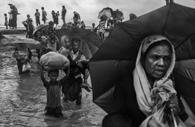 Rohingya refugees carry their belongings as they walk through water on the Bangladesh side of the Naf River after fleeing their village in Myanmar, on September 28, 2017 in Cox's Bazar, Bangladesh. (Photo by Kevin Frayer/Getty Images)