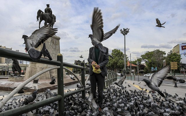 Pigeons are seen on empty Ulus Square after Turkey imposed a four-day nationwide restriction to curb the spread of the novel coronavirus (COVID-19) pandemic in Ankara, Turkey on May 23, 2020. Although Turkey usually declares curfew at the weekends in the major cities, this one will cover all country for four days to include the Eid holiday which marks the end of the Muslim holy month of Ramadan. (Photo by Muhammed Selim Korkutata/Anadolu Agency via Getty Images)