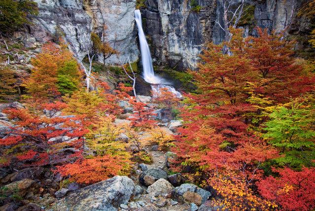 Autumn in Patagonia. (Jesse Estes)