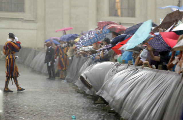 People try shelter from heavy rain during Pope Francis's general audience in St.Peter's Square, at the Vatican, Wednesday, August 31, 2016. (Photo by Andrew Medichini/AP Photo)