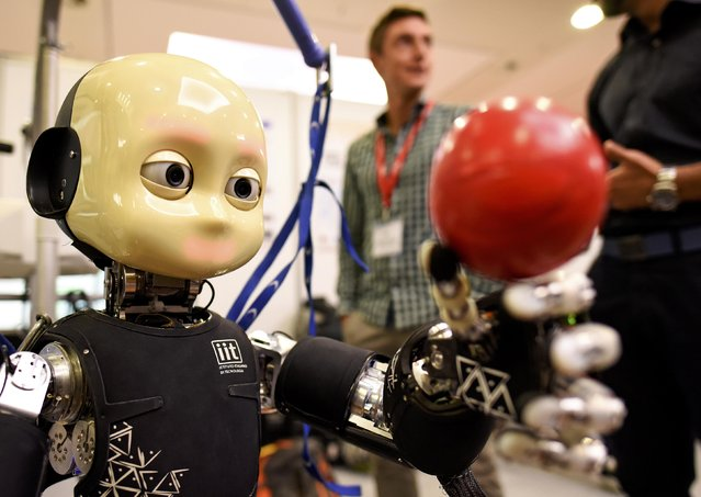An iCub robot made by the Italian Institute of Technology is pictured at the scientists congress IROS 2015 in Hamburg, Germany October 2, 2015. (Photo by Fabian Bimmer/Reuters)