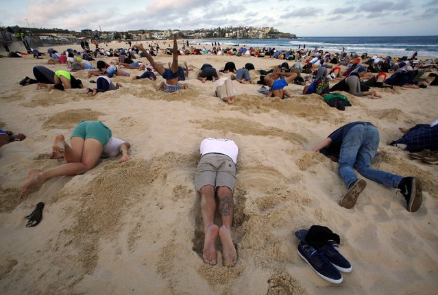 A group of around 400 demonstrators participate in a protest by burying their heads in the sand at Sydney's Bondi Beach November 13, 2014. (Photo by David Gray/Reuters)