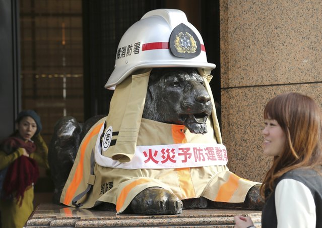 A woman reacts as a bronze lion statue sitting in front of a department store dons a fire fighter costume for the November 9 to 15 fire prevention autumn campaign in Tokyo's Ginza shopping district Monday, November 10, 2014. (Photo by Koji Sasahara/AP Photo)