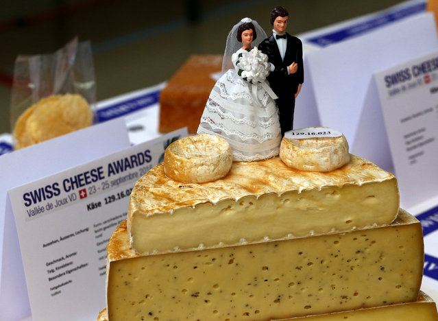 "A married couple is displayed on a pile of cheeses in the ""Speciality"" category during the Swiss Cheese Awards competition in Le Sentier, Switzerland September 23, 2016.. (Photo by Denis Balibouse/Reuters)"