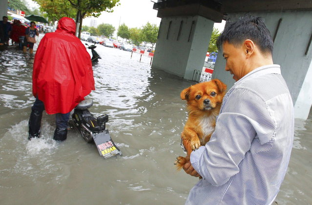 A man holds his dog as he walks along a flooded street after Typhoon Fitow hit Shanghai October 8, 2013. Four people were killed and hundreds of thousands evacuated after Typhoon Fitow hit eastern China, destroying houses and farmlands and closing ports and airports. (Photo by Reuters/Stringer)