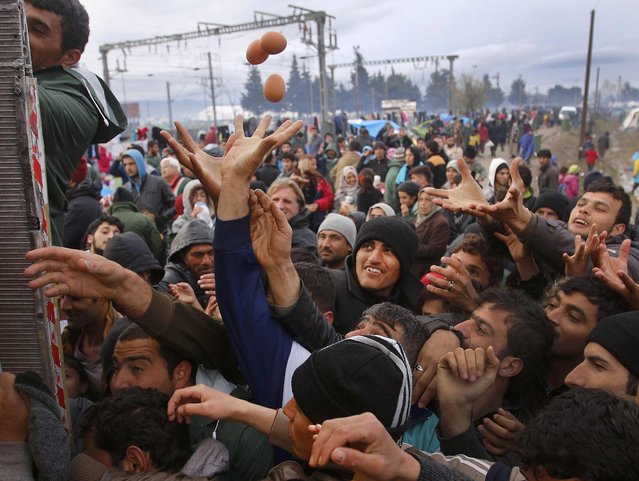Migrants try to get products from a truck at a makeshift camp on the Greek-Macedonian border near the village of Idomeni, Greece March 10, 2016. (Photo by Stoyan Nenov/Reuters)