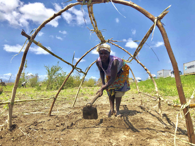 A woman prepares a temporary structure she built after her house was destroyed, on the outskirts of Beira in Mozambique, Thursday, March 28, 2019. The first cases of cholera have been confirmed in the cyclone-ravaged city of Beira, Mozambican authorities announced on Wednesday, raising the stakes in an already desperate fight to help hundreds of thousands of people sheltering in increasingly squalid conditions. (Photo by Tsvangirayi Mukwazhi/AP Photo)
