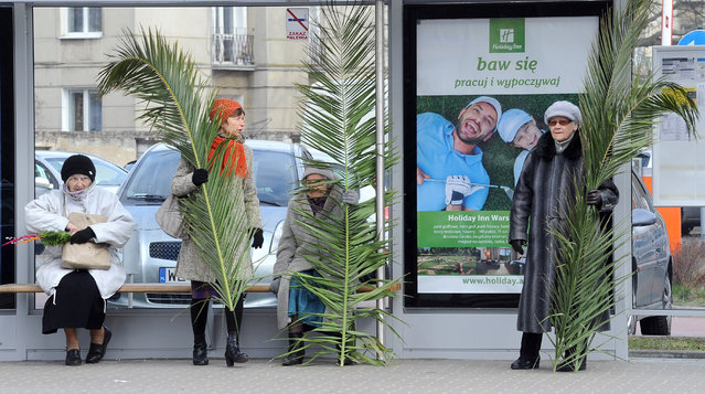 Women with palm leaves wait at a bus stop after a Palm Sunday procession in Warsaw, Poland, Sunday, March 20, 2016. Palm Sunday opens the Holy Week that ends with Easter Sunday, the most important Catholic holiday. (Photo by Alik Keplicz/AP Photo)