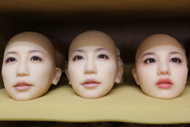 "Heads of love dolls are seen on the shelf on March 9, 2017 in Tokyo, Japan. Japan's oldest and largest ""love doll"" maker Orient Industry, has been producing silicone love dolls since 1977, and has seen there is a trend for intimate relationships with silicone dolls in Japan. The Orient Industry's factory produces approximately 500 life size hand-made per year, and one doll, costs up to 600,000JPY (approx. 6,000 USD), takes four to five weeks to be finished. Originally, the company was marketing love dolls for disabled people, and the company continues to support the community by providing discounts and consulting their sexual urges. (Photo by Taro Karibe/Getty Images)"