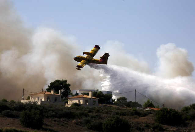 A firefighting plane drops water over a fire at holiday homes in Costa village in the Argolida region, in Southeastern Greece during a developing wild fire, July 20, 2015. (Photo by Yannis Behrakis/Reuters)