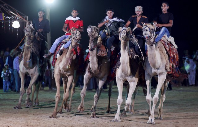 Bedouin Palestinians ride camels as they stage a traditional wedding for Bedouin couple in the northern Gaza Strip August 7, 2015. (Photo by Mohammed Salem/Reuters)