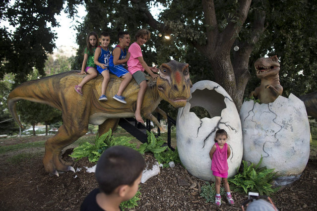 """Young Israelis visit the """"Dinosaur Kingdom"""" exhibition at the Jerusalem Botanical Gardens during the summer vacations, in Jerusalem, Israel, 09 August 2015. Many Israelis are spending time with their children during the summer holidays at nature reserves and parks across the country. (Photo by Abir Sultan/EPA)"""