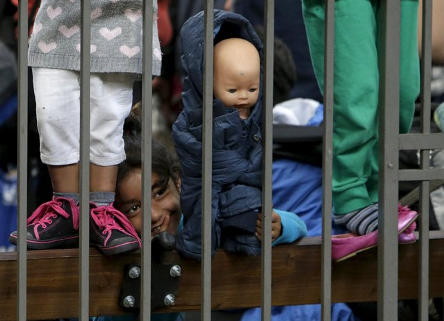A migrant child plays with a doll at Keleti railway station in Budapest, Hungary, September 6, 2015. After days of confrontation and chaos, Hungary deployed more than 100 buses overnight to take thousands of the migrants who had streamed there from southeast Europe to the Austrian frontier. Austria said it had agreed with Germany to allow the migrants access, waiving the asylum rules. (Photo by David W. Cerny/Reuters)