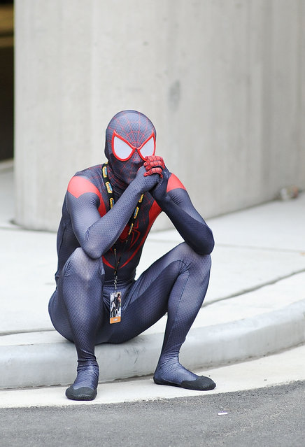 A Comic Con attendee poses as Spiderman during the 2014 New York Comic Con at Jacob Javitz Center on October 10, 2014 in New York City. (Photo by Daniel Zuchnik/Getty Images)