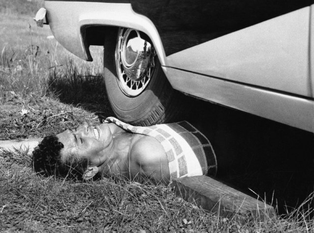 Leon Samson, 24-year-old showman, grimaces as an automobile is driven across his chest at Perth, Australia on October 9, 1960. Samson said the towel on his chest is to prevent the wheel from tearing his flesh. (Photo by AP Photo)