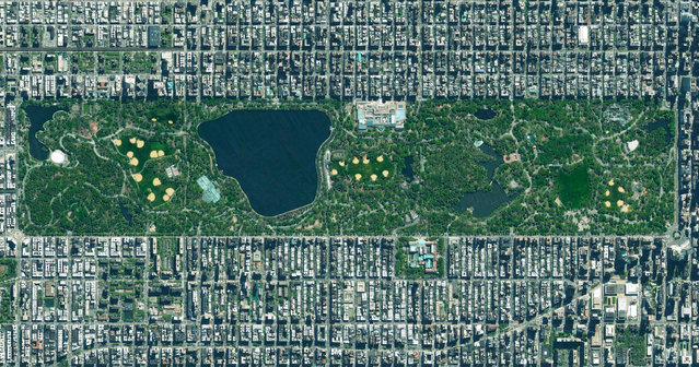 """Central Park in New York City, USA spans 341 hectares (843 acres), which is 6% of the island of Manhattan. One of the most influential innovations in the park's design was its """"separate circulation systems"""" for pedestrians, cyclists, horse riders, and cars. The park contains numerous tennis courts and baseball fields, an ice-skating rink, and a swimming pool. It also serves as the finish line for the New York City Marathon and New York City Triathlon. (Photo by Benjamin Grant/Penguin Random House)"""