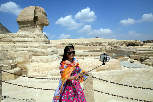 """A photograph made available on 27 September 2016 shows a tourist taking a selfie in front of the Sphinx, Giza, Egypt, 23 September 2016. The United Nations' """"World Tourism Day"""" is observed on 27 September 2016. Tourism industry in Egypt, one of the main sources for the country's much needed foreign currency, has been trying to recover after years of turbulence. The number of tourists visiting Egypt dropped in the first half of 2016 by more than 50 percent. (Photo by Khaled Elfiqi/EPA)"""