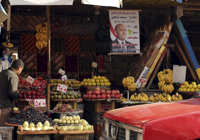 An electoral banner is seen at a fruit market in Alexandria, Egypt, October 18, 2015. (Photo by Asmaa Waguih/Reuters)