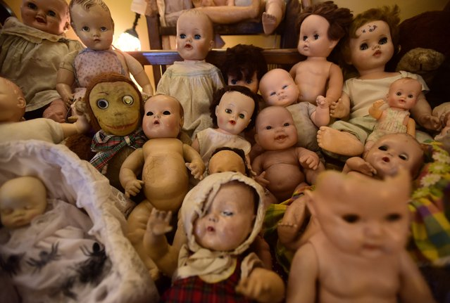 "An open house known as ""The Doll Asylum"" in Portland, Oregon on October 23, 2016. Mark Williams and his wife Heidi Loutzenhiser love halloween so much they fill their home with over 1,000 creepy dolls before opening it up for the public to enjoy over the halloween season. (Photo by ddp USA/Rex Features/Shutterstock)"
