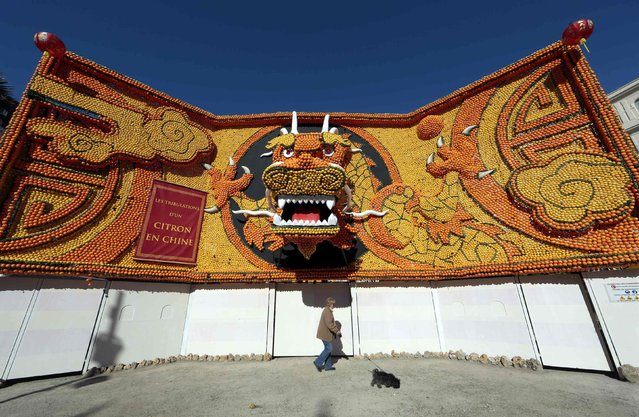 A woman with her dog walks past the entrance of the 82th Lemon festival in Menton February 12, 2015. (Photo by Eric Gaillard/Reuters)