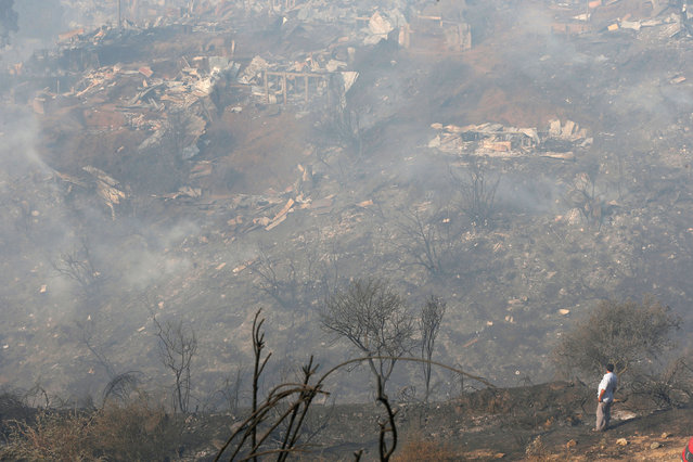 A resident watches dozens of houses burned on a hill, where more than 100 homes were burned due to a forest fire but there have been no reports of death, local authorities said in Valparaiso, Chile January 2, 2017. (Photo by Rodrigo Garrido/Reuters)