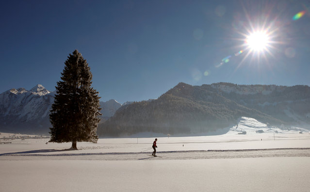 A cross-country skier is seen in the snow-covered landscape during sunny winter weather near Unteriberg, Switzerland January 20, 2017. (Photo by Arnd Wiegmann/Reuters)