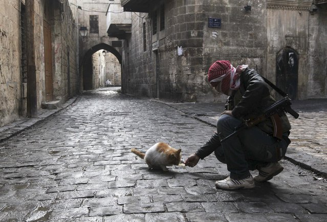 """A """"Free Syrian Army"""" fighter feeds a cat in the old city of Aleppo, Syria January 6, 2013. (Photo by Muzaffar Salman/Reuters)"""