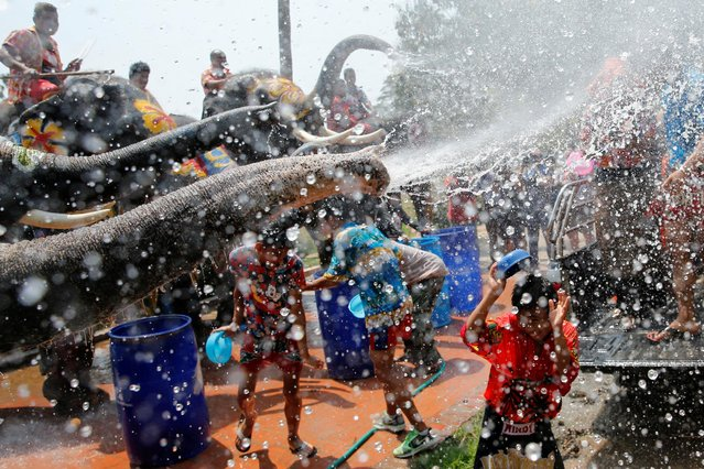 Elephants spray children with water during the celebration of the Songkran water festival in Thailand's Ayutthaya province, north of Bangkok, April 11, 2016. (Photo by Jorge Silva/Reuters)