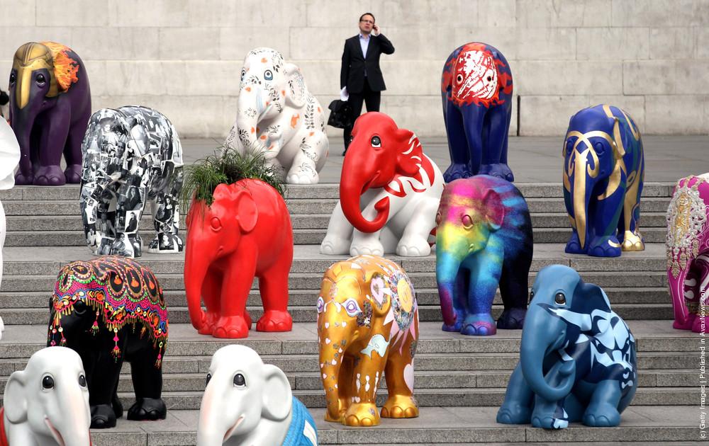 260 Elephant Sculptures