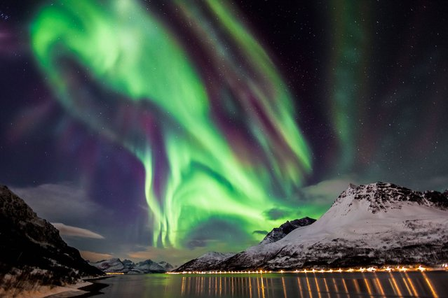 Celestial Dance by Claus Possberg (Germany). The spectacular Northern Lights pictured unfolding over a fjord, in Skjervøy, Troms, Norway. The vibrant colours are produced at various altitudes by different atmospheric gases, with blue light emitted by nitrogen and green by oxygen. Red light can be produced by both gases, while purples, pinks and yellows occur where the various colours mix and intersect. (Photo by Claus Possberg)