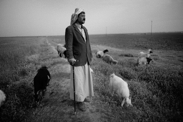 "Ibrahim Abu Farham, a shepherd, in Moshrefa village in 2016, next to land ploughed for the first time since the war. All of the fields pictured were cleared by Mag teams. ""My 19 year-old cousin was trying to clear the landmines here to stop his sheep from blowing up. He set one off and was killed. Nine people have been killed here by these landmines in the village. It is a tragedy"". (Photo by Sean Sutton for the Mines Advisory Group/The Guardian)"