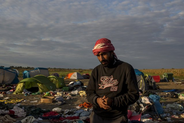 A migrant stands in front of tents at a collection point in the village of Roszke, Hungary, September 8, 2015. Most of the people flooding into Europe are refugees fleeing violence and persecution in their home countries who have a legal right to seek asylum, the United Nations said on Tuesday. (Photo by Marko Djurica/Reuters)