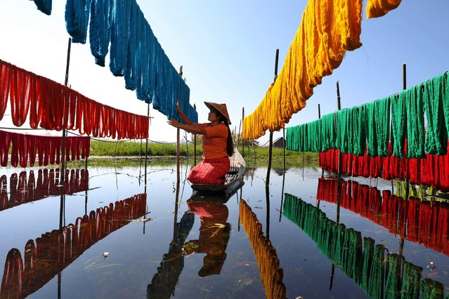 A woman makes use of a still day on Inle Lake in Burma on January 16, 2020 by drying newly-dyed threads made out of lotus stems. (Photo by Sabina Akter/Solent News)