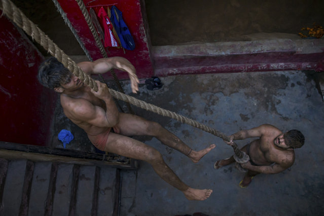 In this November 20, 2017 photo, Indian Kushti wrestlers practice rope climbing, during their daily training at an akhada, a kind of wrestling hostel at Sabzi Mandi, in New Delhi, India. (Photo by Dar Yasin/AP Photo)