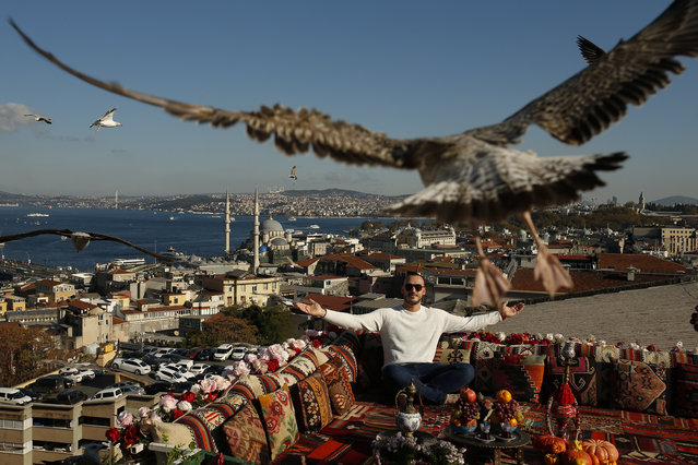 A seagull files over a man sitting at a coffee shop backdropped by the Bosporus Strait in Istanbul, Tuesday, November 17, 2020. (Photo by Emrah Gurel/AP Photo)