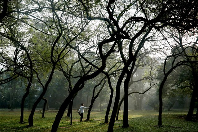 A man does morning exercise at the Ramna Park in Dhaka, Bangladesh, December 23, 2020. (Photo by Mohammad Ponir Hossain/Reuters)