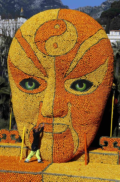A worker puts the final touches to a replica of a Beijing opera mask made with lemons and oranges during the 82th Lemon festival in Menton February 12, 2015. (Photo by Eric Gaillard/Reuters)