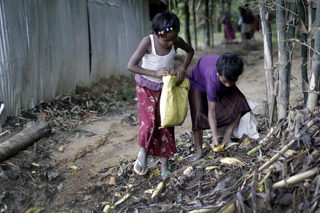Rohingya refugee children search through a pile of trash for edible bits of banana on Tuesday, June 26, 2018, in Jamtoli refugee camp in Bangladesh. (Photo by Wong Maye-E/AP Photo)