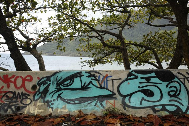 Graffiti from a local artist known as Beak covers a traffic barrier on the roadside above Kahana Bay Beach Park in Hauula, Hawaii January 1, 2016. (Photo by Jonathan Ernst/Reuters)