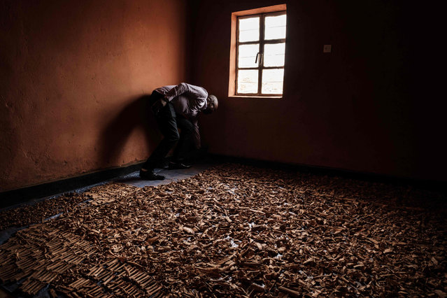 A worker stands near victims' bones recovered from pits which were used as mass grave during 1994 Rwandan genocide and hidden under houses in Kabuga, in the outskirts of Kigali, Rwanda on April 9, 2019. Rwanda on April 7, 2019 began 100 days of mourning for more than 800,000 people slaughtered in a genocide that shocked the world, a quarter of a century on from the day it began. (Photo by Yasuyoshi Chiba/AFP Photo)