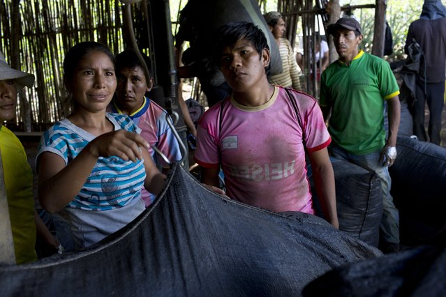 In this June 20, 2015 photo, laborers weigh a sack of  freshly harvested coca leaves in Samugari, Peru. Most of the residents of the area depend on coca production. It is the reason, in fact, that many have settled in this remote region. (Photo by Rodrigo Abd/AP Photo)