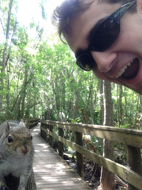 In this photo made Saturday April, 26, 2014, and provided by Brian Genest, a squirrel approaches Brian Genest as he takes a photo of himself at John Chestnut Park near Tampa, Fla.  Genest, 17, of Auburn, Maine, said Thursday, May 1, 2014,  he saw what appeared to be a friendly squirrel on a hand rail while walking through a park. (Photo by Brian Genest/AP Photo)