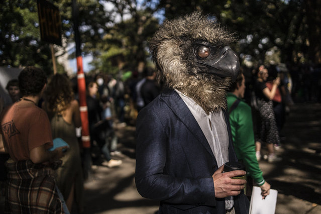 A protestor dressed as a bird in the Domain on September 20, 2019 in Sydney, Australia. Rallies held across Australia are part of a global mass day of action demanding action on the climate crisis. (Photo by Brook Mitchell/Getty Images)