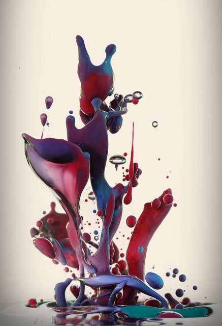 """Dropping"" – Artist uses high-speed photography to capture the beauty of ink and oil. (Photo by Alberto Seveso)"