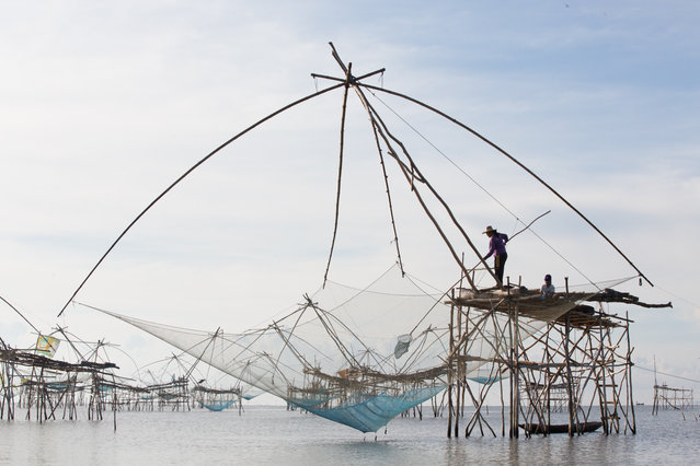 """""""Fisherwoman"""". The fishing gear made by bamboo and net, called """"Yor"""", is used by fishermen in Phatthalung, Thailand. I have witnessed this unique way of fishing during my visit to Thailand in may 2014. I have seen a woman who is using (dip and winch) this gear for fishing in the morning. Shooting towards the sunlight with narrow aperture normally showcases the mood of the environment with no touch on the original photo. Photo location: Ban Pakpra, Phatthalung, Thailand. (Photo and caption by Kajan Madrasmail/National Geographic Photo Contest)"""