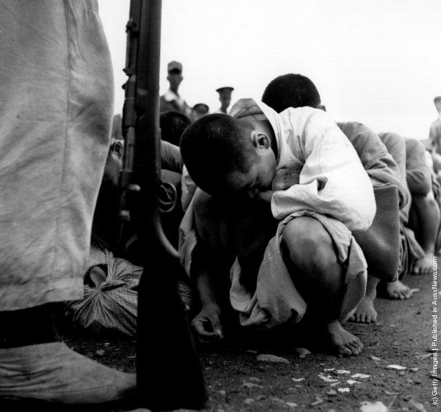 South Korean political prisoners in Pusan, during the Korean War